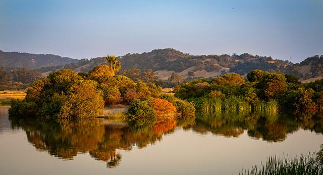 Las Gallinas Pond Island