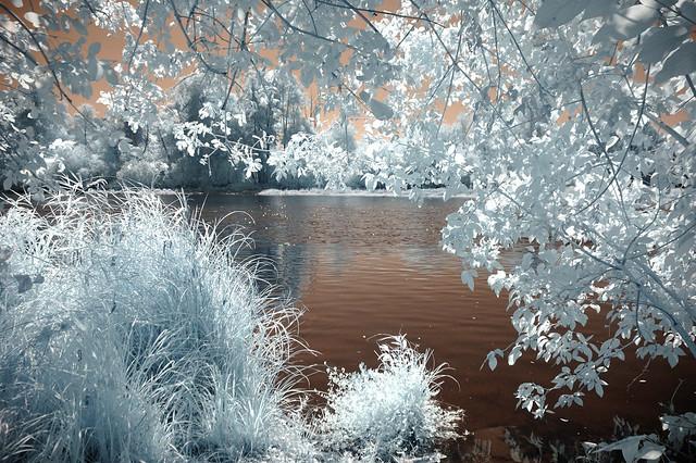 Willamette River view - infrared - HSS!