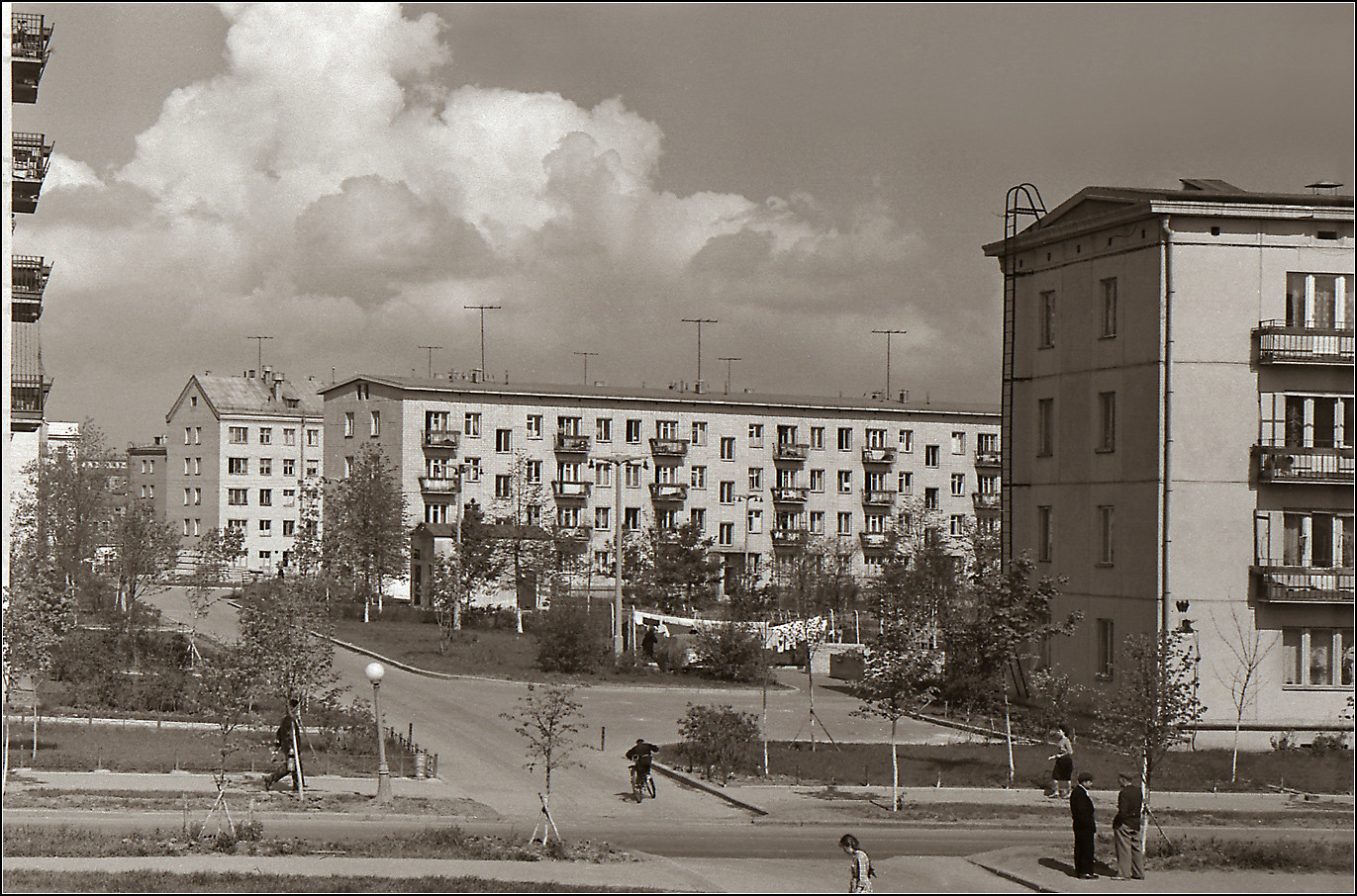 50. 1961. Ул. Гримау