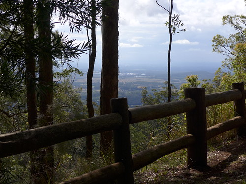theknoll knollroadlookout mounttamborinenationalpark mttamborine nationalpark view southeastqueensland eucalyptforest lookout belvedere