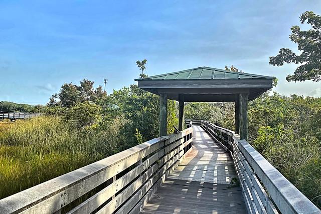 Chapel Trail boardwalk 05-20200904