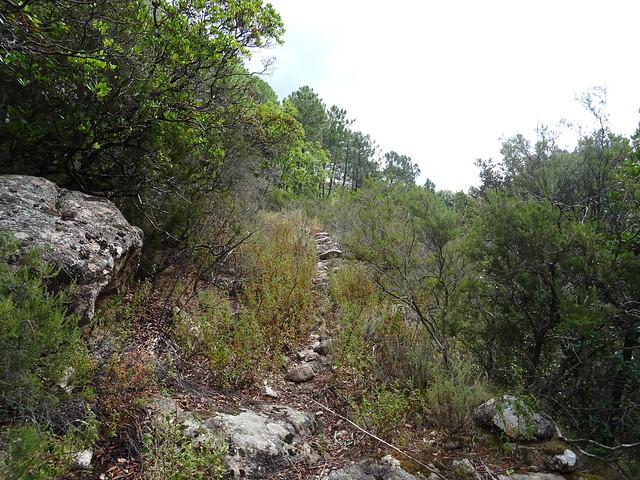 Chemin en montée vers la crête depuis la confluence Frassiccia (beaux soubassements)