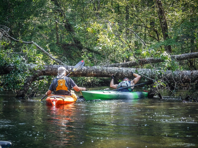 Edisto Confluence Paddle with Bamberg CoC