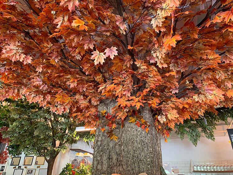 Autumn-themed décor in the cafe