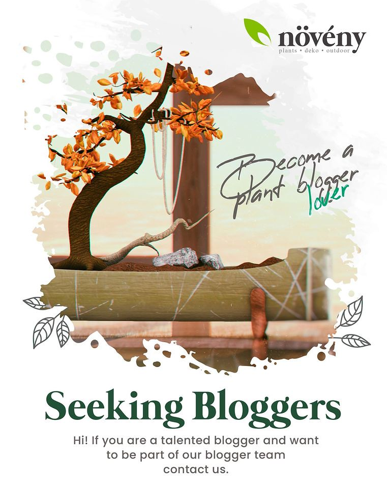 Noveny – Blogger Search