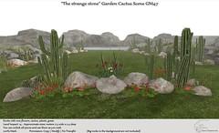 ".:Tm:.Creation ""The strange stone"" Garden Cactus scene GM47"
