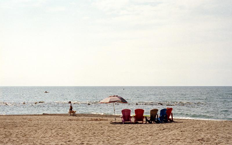 Dogwalking on the Beach_