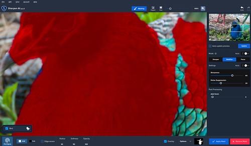 Screenshot of Peacock in Topaz Sharpen AI