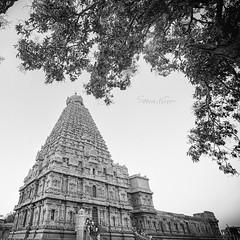 Tanjavore Big Temple