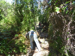 Travaux sur la 1ère partie du chemin en RG avant la traversée de la Figa Bona