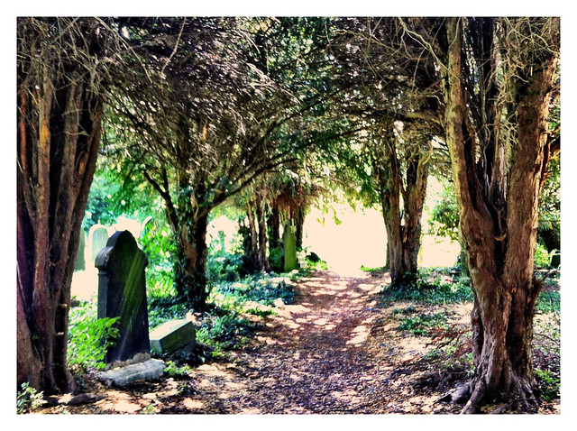 Graveyard in strong sunlight (manipulated)