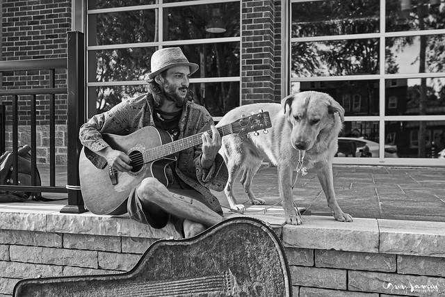 Musicien de rue et son chien