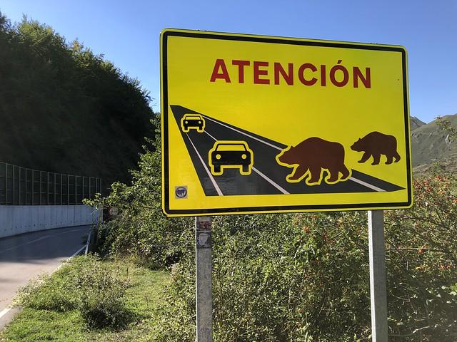 Atención Osos (señal de carretera en Somiedo, Asturias)