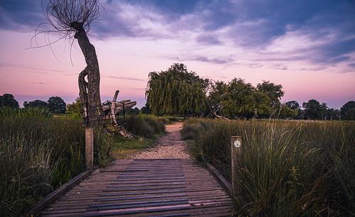 2020 countryuk countryuklondon countryuklondonrichmond naturesunrisesunset placelargenationalpark