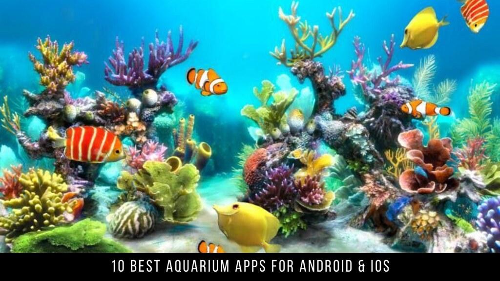 10 Best Aquarium Apps For Android & iOS