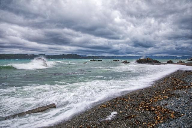Eastbourne Area, New Zealand, Explored