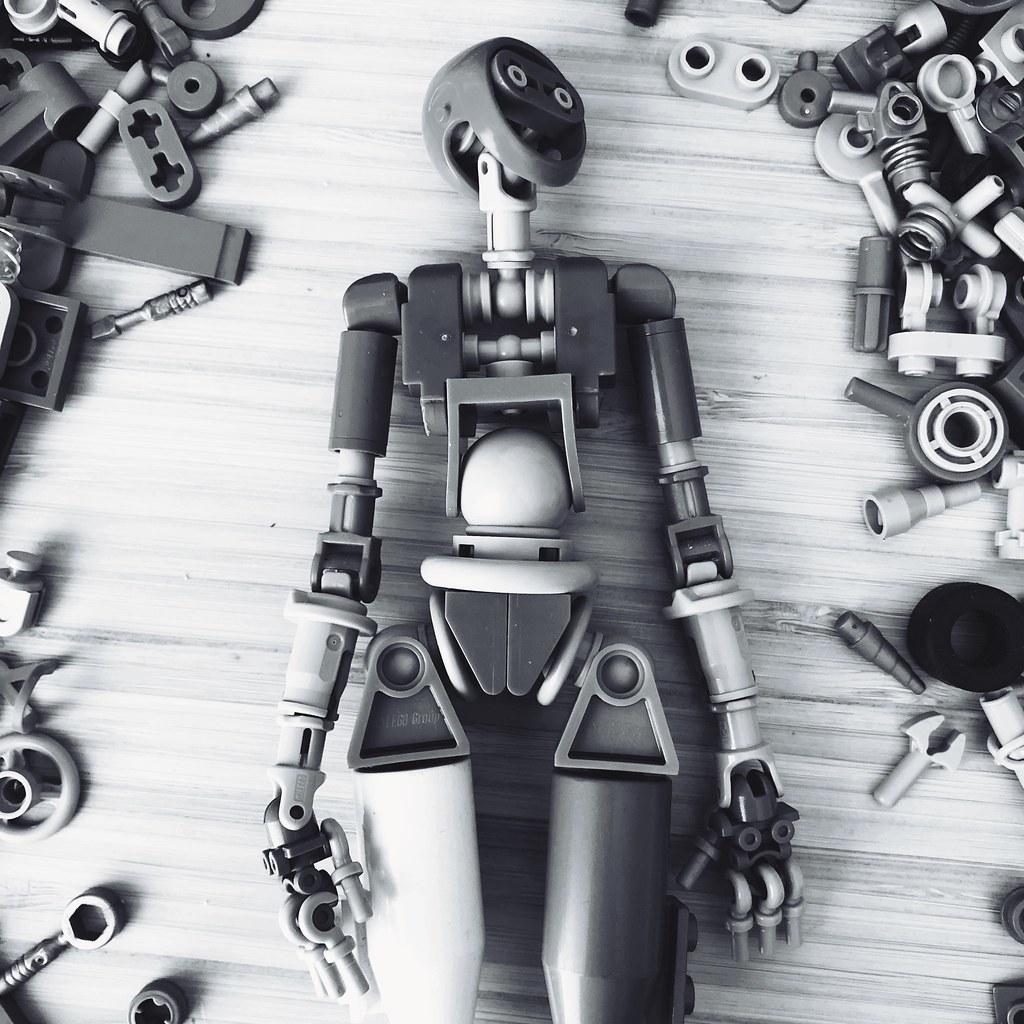 Robot WIP