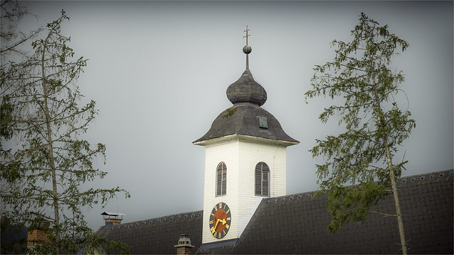 _DSC8685  Between the trees - Gams close Hieflau - Styria / Austria