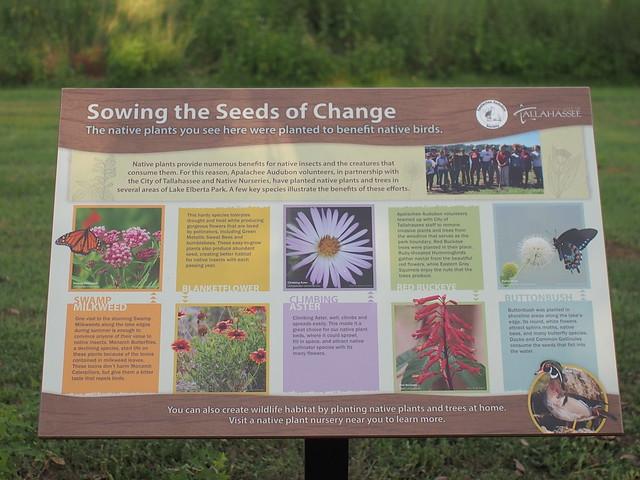50317446771 fd23508e36 z Lake Elberta Tallahassee Pollinator Sign 1