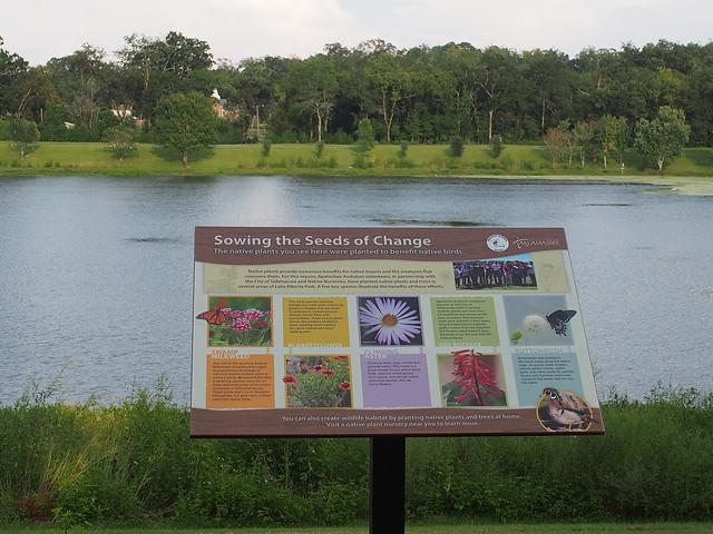 50317627512 ff84aa0e0b z Lake Elberta Tallahassee Pollinator Sign 2