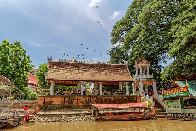 Boat trip Mae Ping river cruises - Chiang mai (96 sur 108)