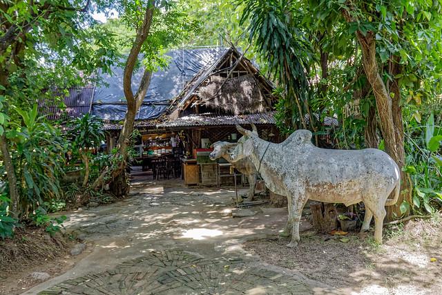 Boat trip Mae Ping river cruises - Chiang mai (36 sur 108)
