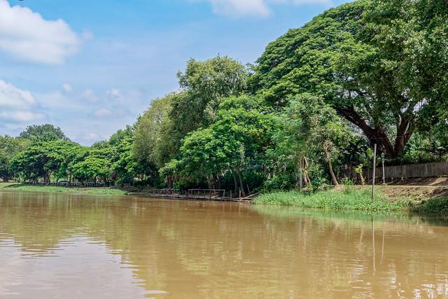 Boat trip Mae Ping river cruises - Chiang mai (16 sur 108)