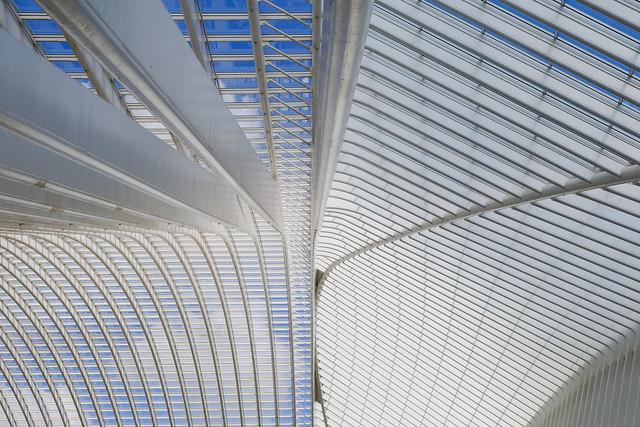 Luik-Guillemins Calatrava