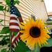 Flag & Flower