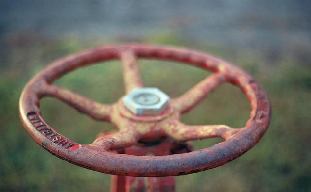 Water Wheel Australia, Tap Tuesday