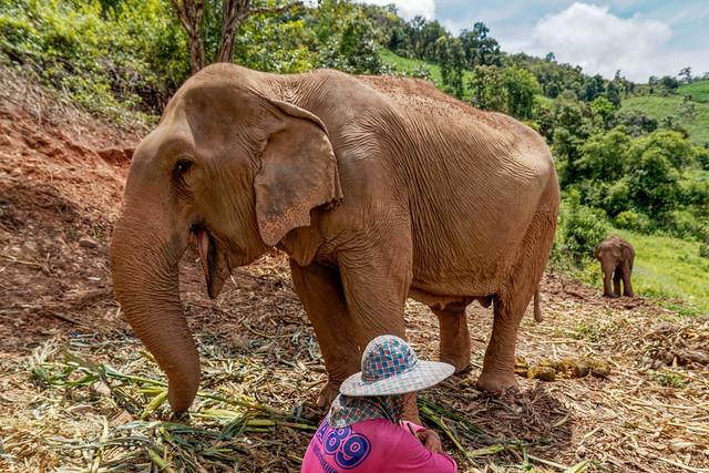 Mae Chaem District, Chiang Mai (22 sur 25)