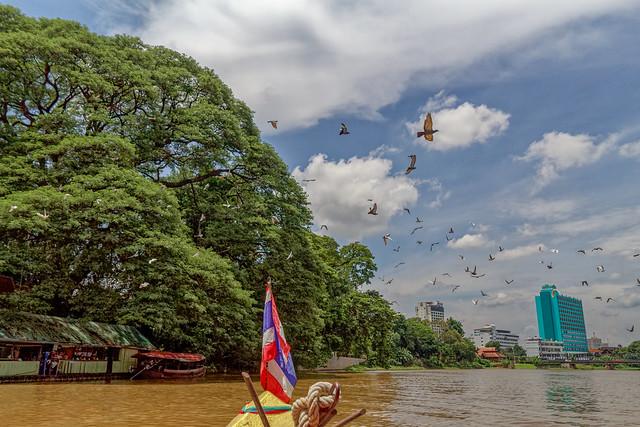 Boat trip Mae Ping river cruises - Chiang mai (95 sur 108)