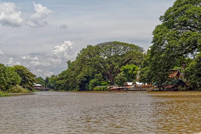 Boat trip Mae Ping river cruises - Chiang mai (93 sur 108)
