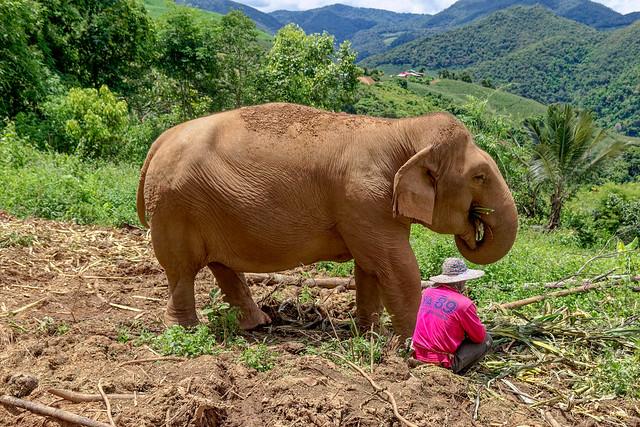 Mae Chaem District, Chiang Mai (10 sur 25)