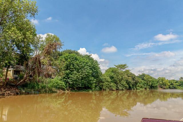 Boat trip Mae Ping river cruises - Chiang mai (21 sur 108)