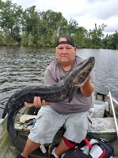 Photo of man in a small boat holding a snakehead
