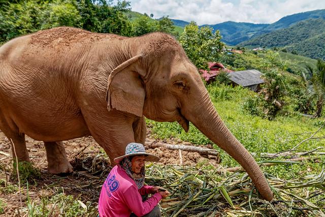 Mae Chaem District, Chiang Mai (5 sur 25)