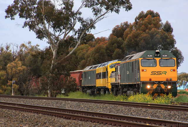 RL304 48s34 CLF1 and RL306 load KV3 at Dimboola Grain Flow on CLF1's first revenue run in SSR colours