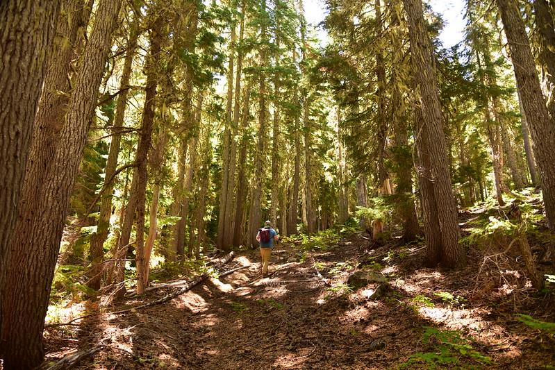 McBee Trail