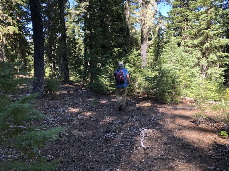 Hiking down Horse Mountain