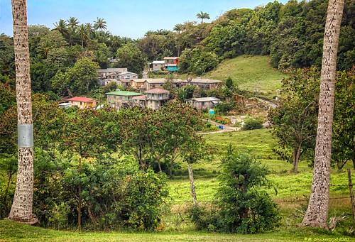 barbados highland stthomasbarbados centralparishofstthomas houses hillside homes highlandbarbados steephills mountainouslandscape caribbeanisland island easterncaribbeanisland britishcommonwealthnation