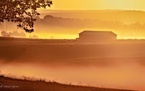 virginia farm horse landscape longbranchfarm sky summer sunrise