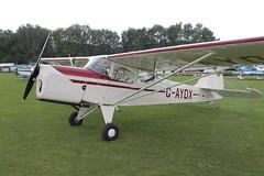 G-AYDX Beagle A.61 Terrier 2 [B.647] Popham 060920