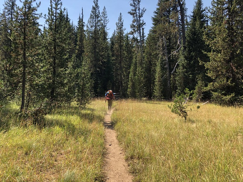 Horse Lake Trail