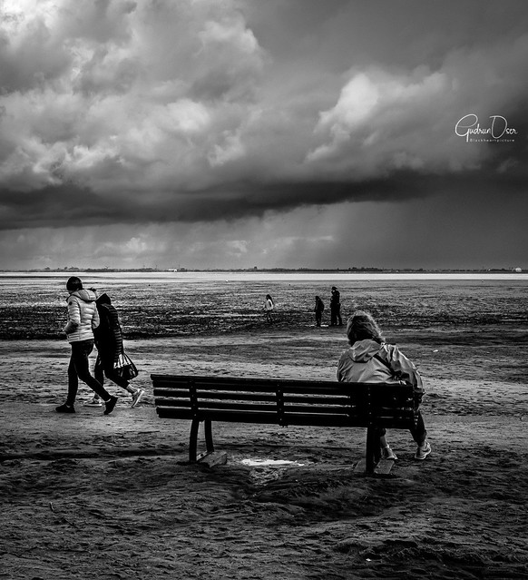 A day at the sea .. Ebb and flood .. A come and go