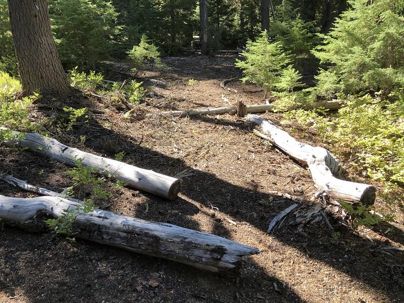 Horse Mountain Trail
