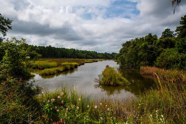 Botany Bay wildlife preserve, Edisto Island, South Carolina