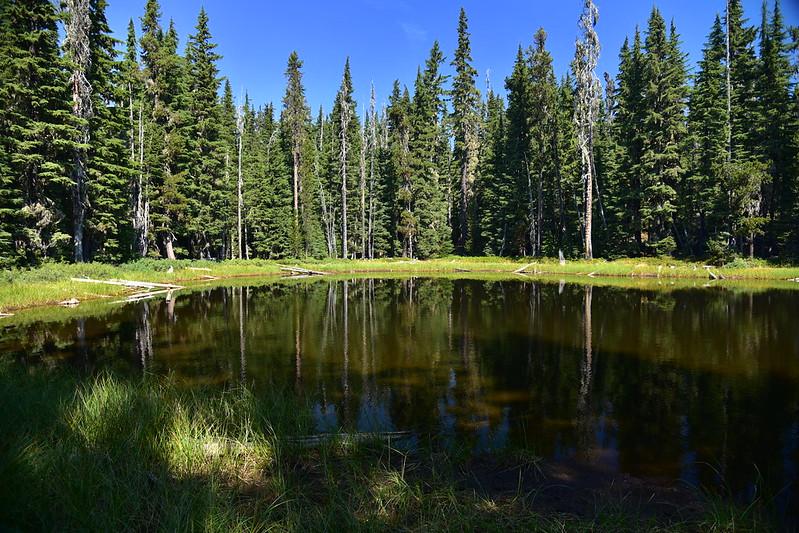 Pond along Sunset Lake Trail