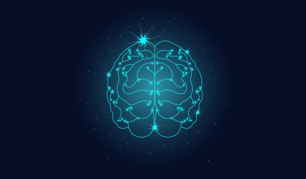 un-dispositif-de-décodage-cérébrale-plug-and-play