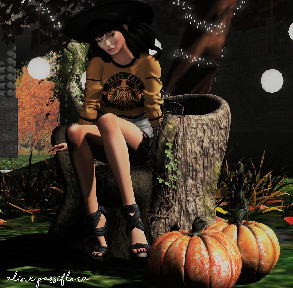 Fall Calls